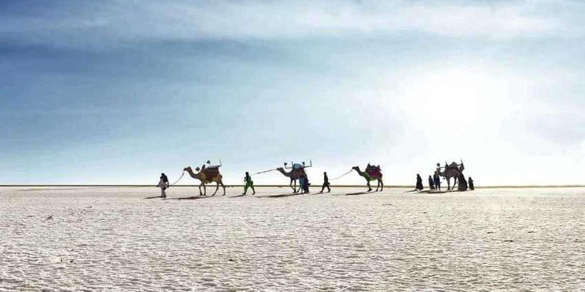 GUJARAT - The largest salt desert in Asia