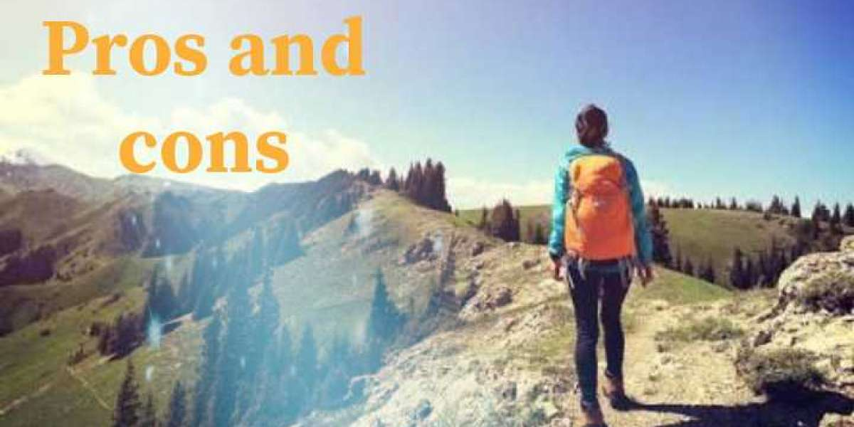 Pros and cons of traveling