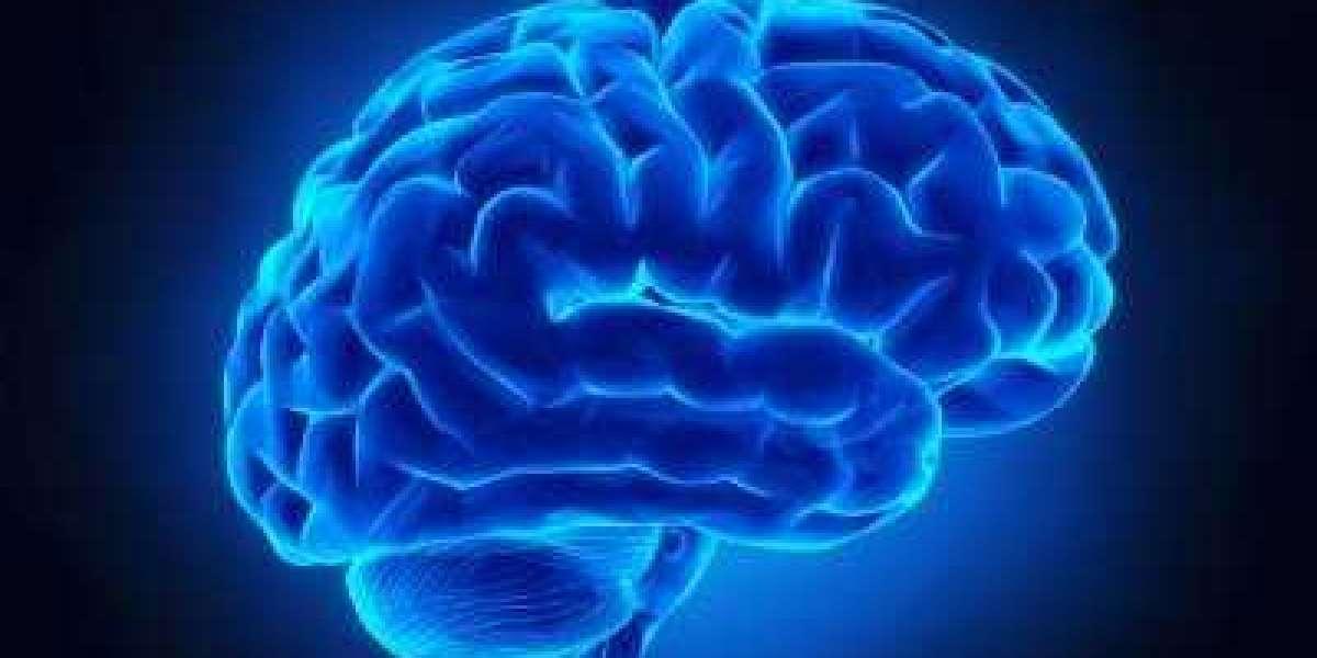 How Does Gavvia Brain Enhancement Work?